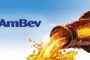 Revenda Ambev  | Como comprar no Atacado direto da Fabrica (Melhor Preço)