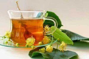 Para que serve a Espinheira Santa, seus benefícios e veja se o chá realmente emagrece