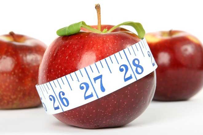 Os Melhores fitoterápicos para emagrecer! Lista completa de Nutricionista