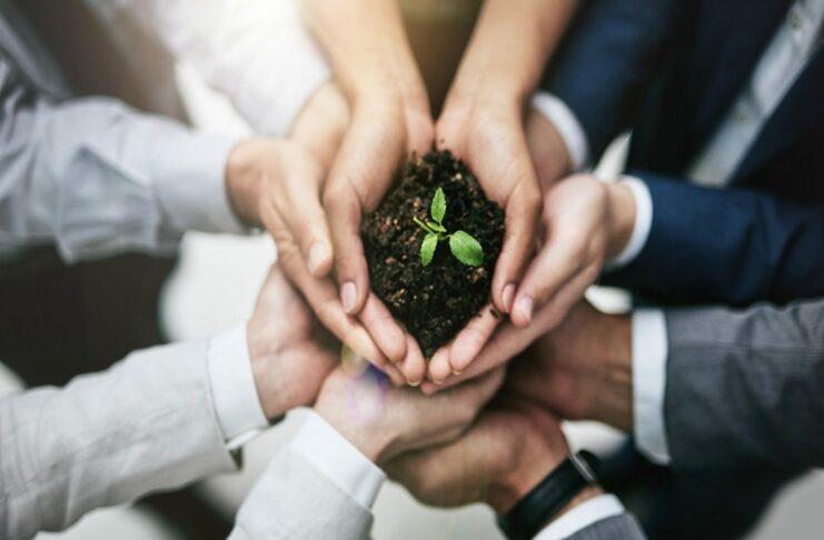 Start Amazônia: evento online debaterá empreendedorismo sustentável