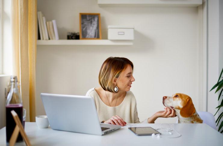 5 maneiras de ajudar os funcionários a fazer o melhor uso dos benefícios